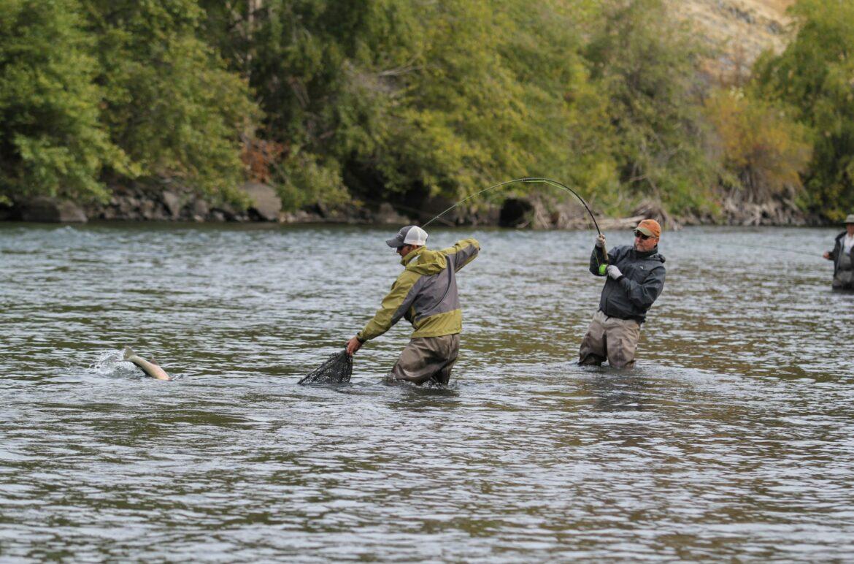 Two men fishing in stream